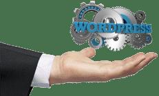 Wordpress-Plugins-Icon